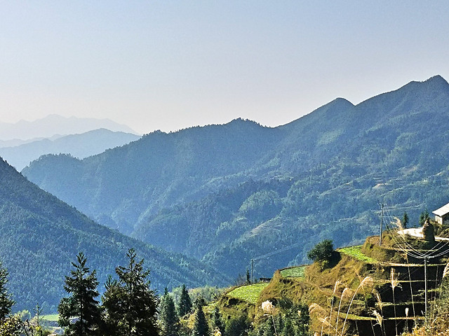 mountain-travel-wood-nature-no-person 图片素材