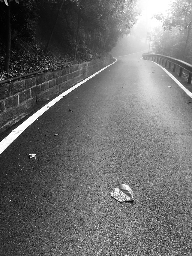 street-road-monochrome-asphalt-lane picture material
