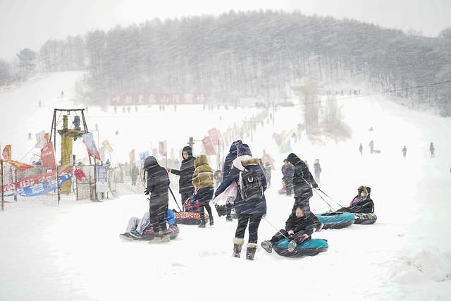 snow-winter-architecture-no-person-cold picture material