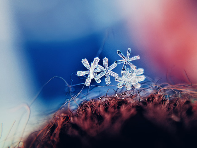 christmas-winter-blur-desktop-blue 图片素材