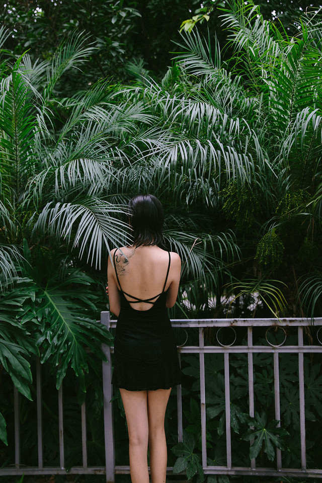tree-people-summer-tropical-garden picture material