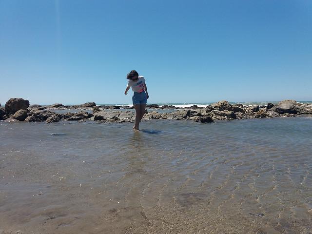 beach-water-sea-sand-seashore picture material