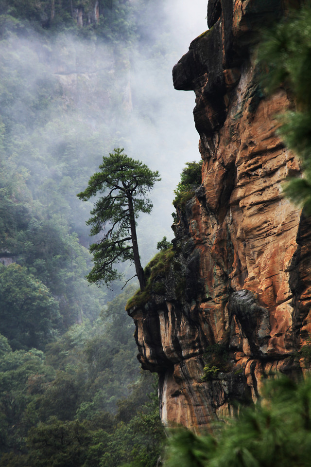 no-person-outdoors-tree-travel-nature 图片素材