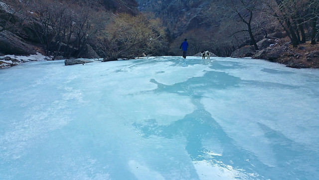 snow-winter-cold-ice-landscape 图片素材