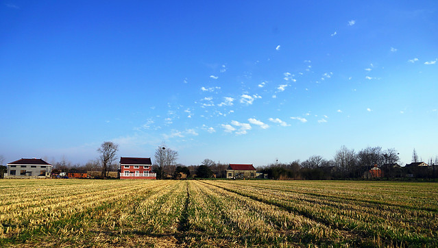 agriculture-farm-no-person-field-sky picture material