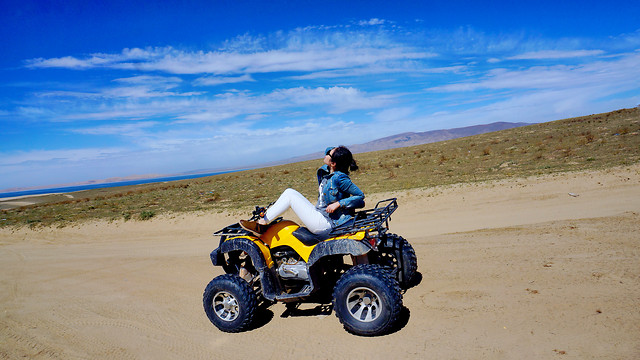 sand-all-terrain-vehicle-adventure-vehicle-land-vehicle picture material