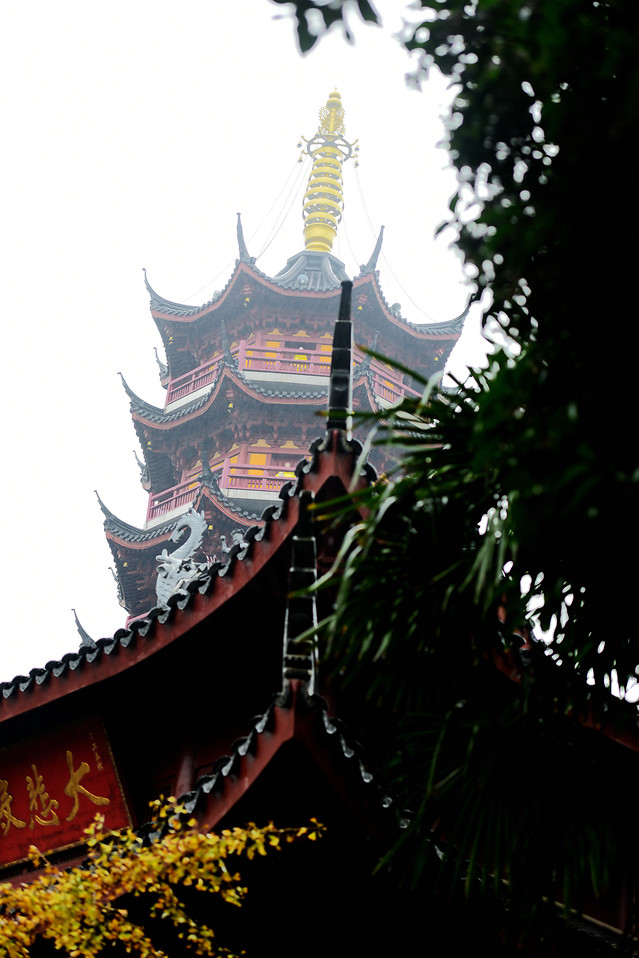 chinese-architecture-temple-pagoda-travel-dragon picture material
