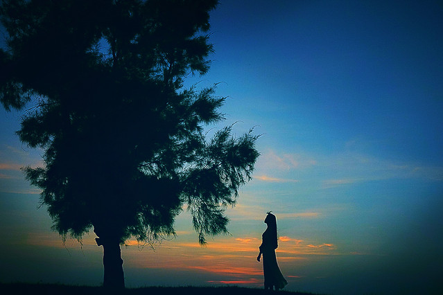 silhouette-sunset-dawn-backlit-sky picture material