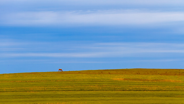 no-person-landscape-grassland-sky-prairie 图片素材