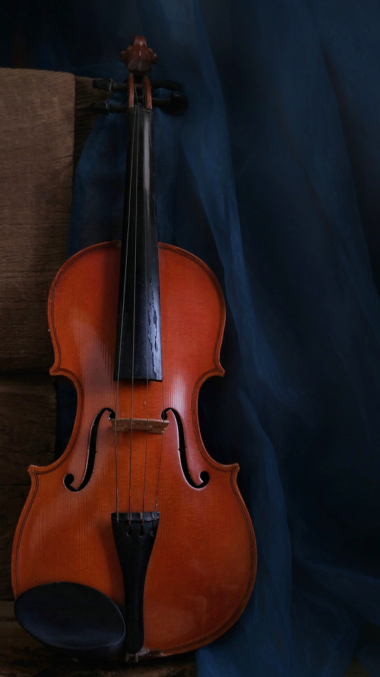 violin-musical-instrument-cello-instrument-no-person picture material