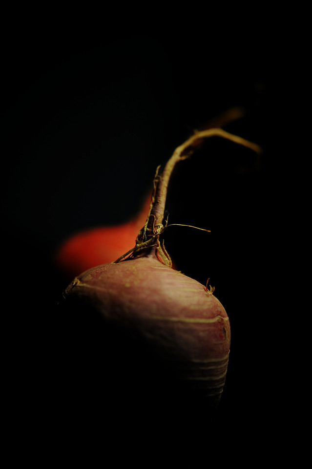 food-no-person-grow-still-life-dark 图片素材