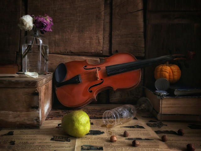 wood-no-person-violin-instrument-musical-instrument picture material