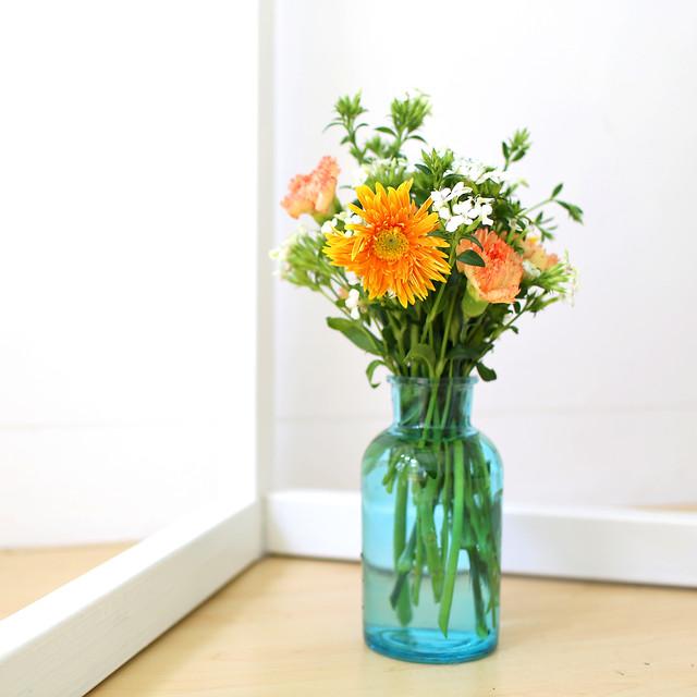 vase-flora-flower-nature-leaf picture material