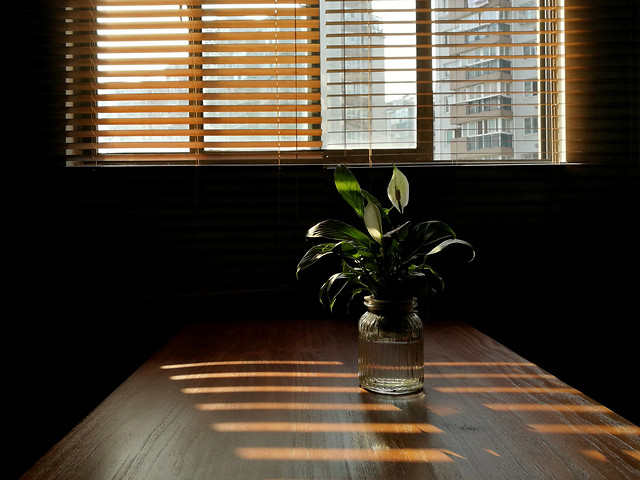 window-room-indoors-light-lamp picture material