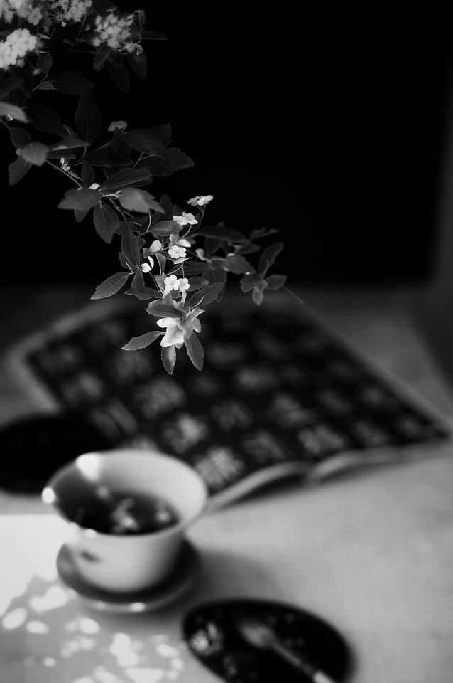 monochrome-no-person-still-life-black-black-white picture material
