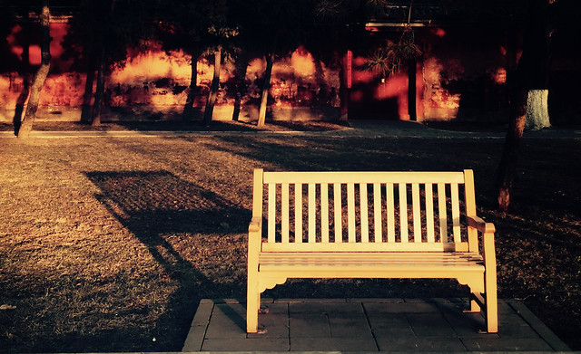 no-person-bench-seat-wood-outdoors picture material