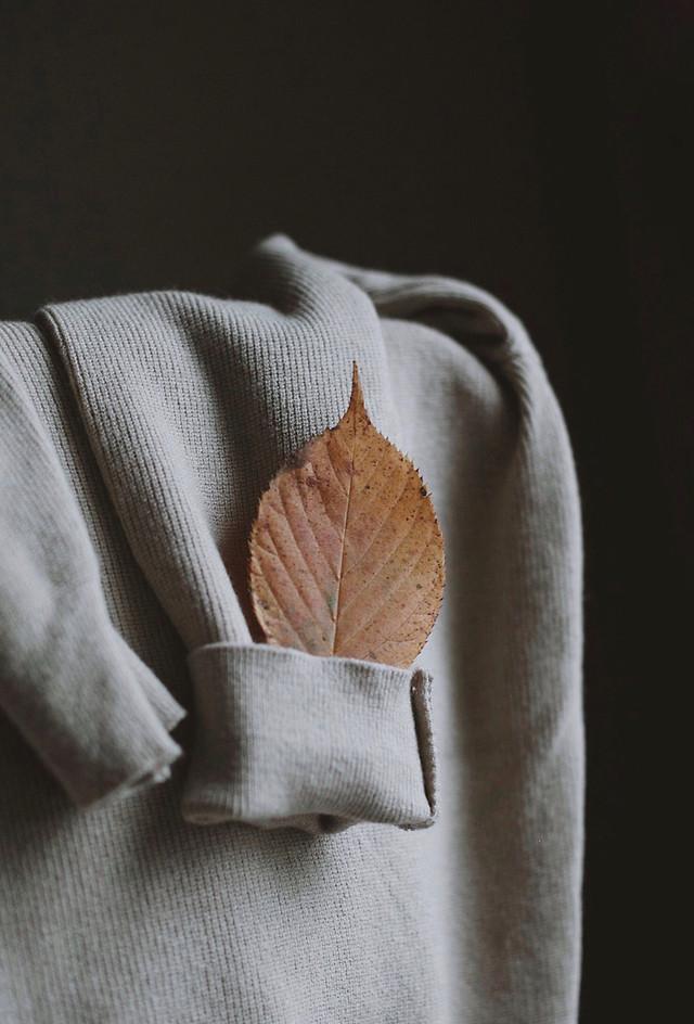 wear-no-person-fashion-still-life-textile picture material