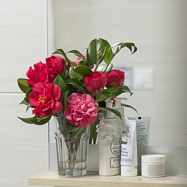 vase-no-person-bouquet-flower-nature picture material