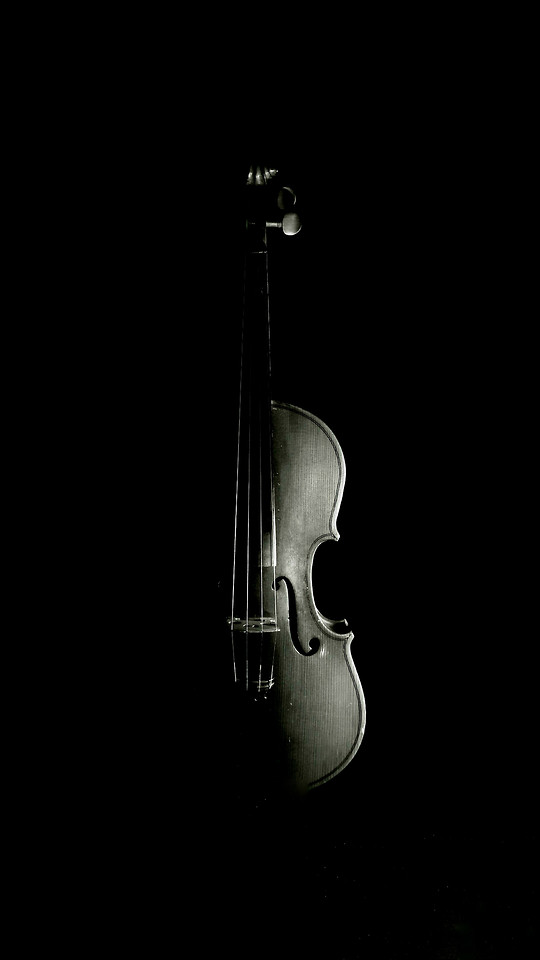 no-person-instrument-music-string-instrument-musical-instrument picture material