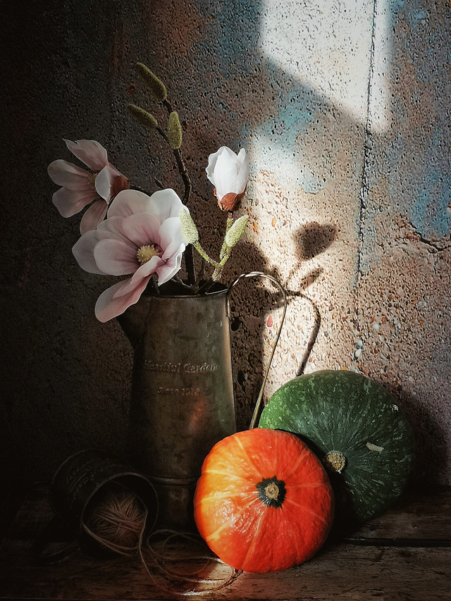 still-life-no-person-flower-rustic-wood picture material