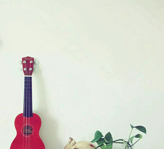flower-art-music-no-person-instrument picture material