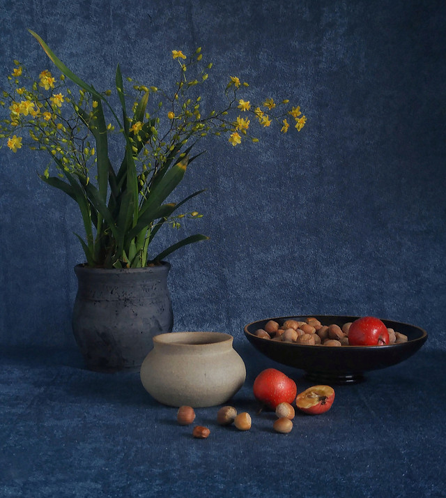 no-person-flower-still-life-pot-interior-design picture material
