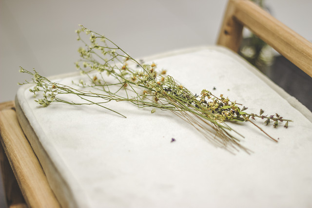 still-life-no-person-wood-flower-herb picture material