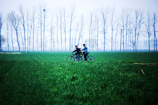 grass-green-park-bike-landscape 图片素材