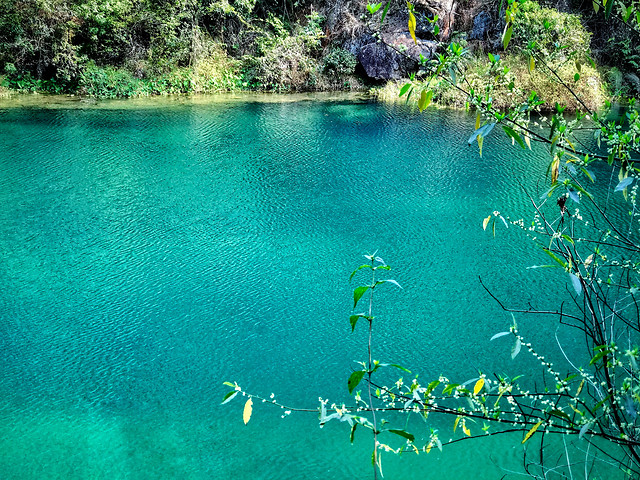 water-tropical-nature-travel-summer picture material