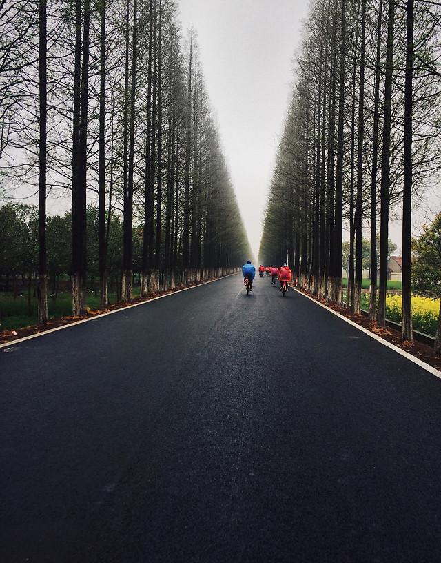 road-no-person-asphalt-lane-path 图片素材