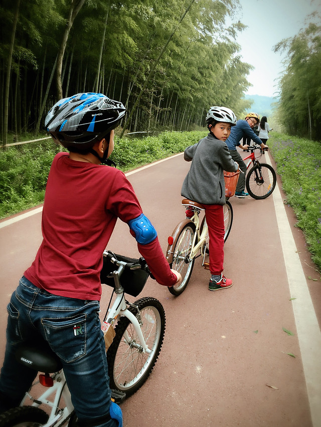 bike-cycle-sport-land-vehicle-bicycle-road-bicycle picture material