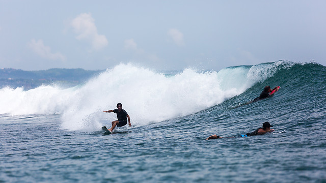 surf-action-water-sports-surfboarding-water picture material