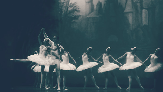 ballerina-ballet-dancer-swan-people picture material