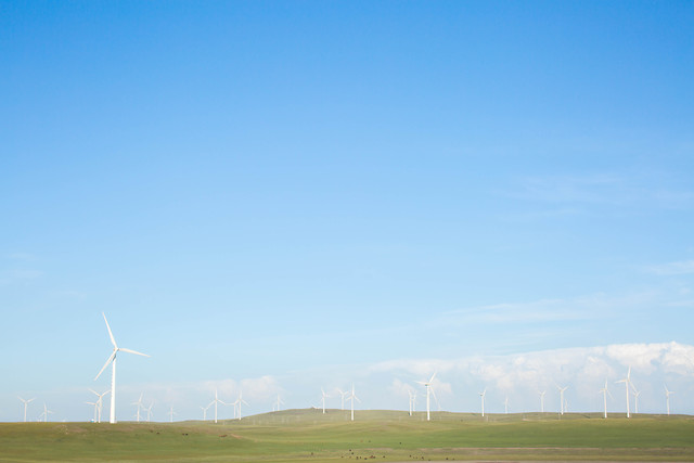 wind-sky-no-person-nature-wind-farm picture material