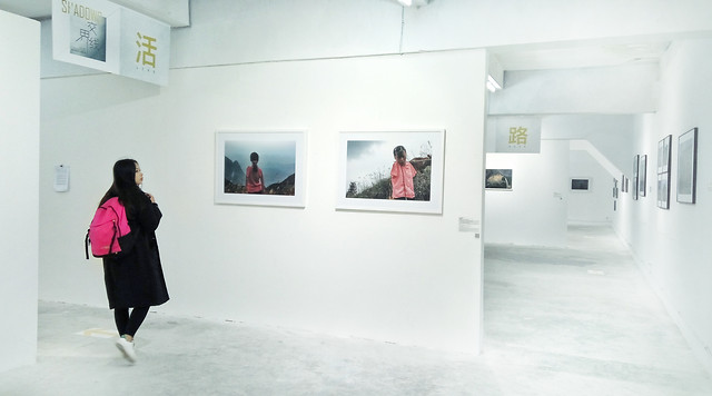 museum-winter-woman-exhibition-room picture material
