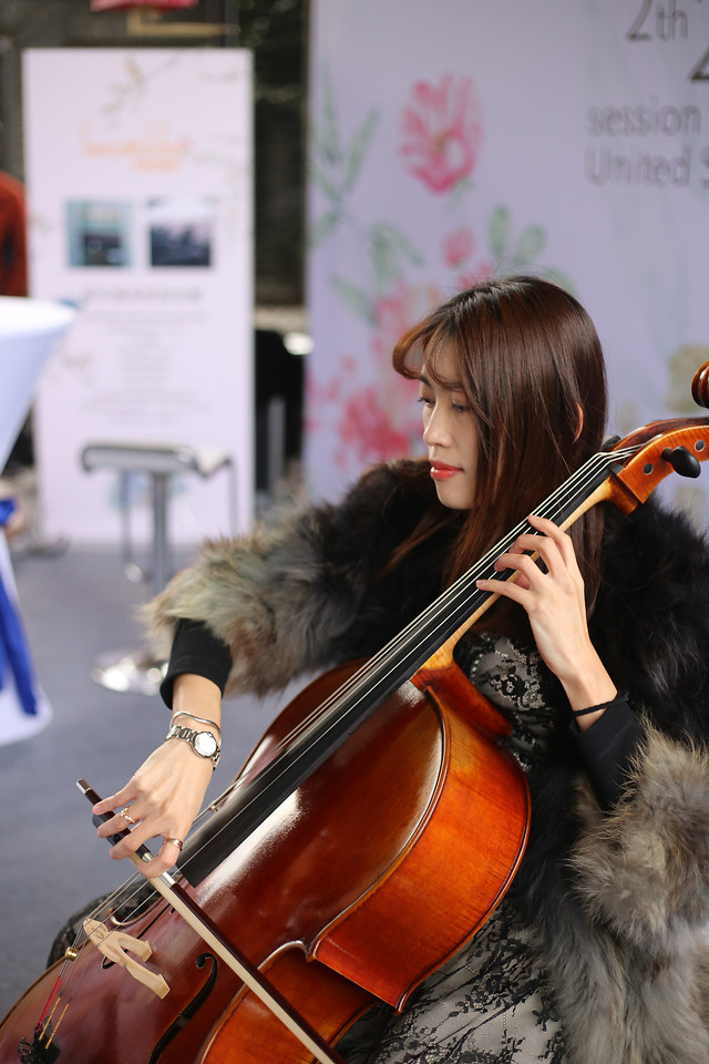 violin-music-musician-violinist-performance picture material