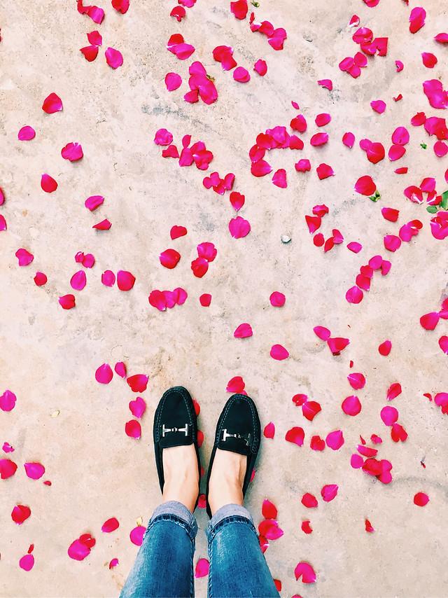 pink-no-person-footwear-desktop-magenta picture material