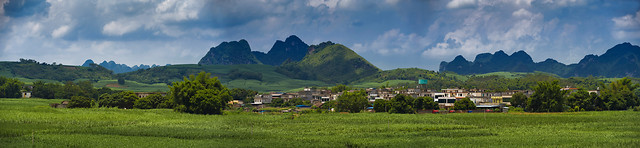 mountain-panoramic-tree-hill-landscape picture material