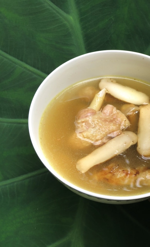 dish-soup-food-cuisine-matsutake-chicken-soup 图片素材
