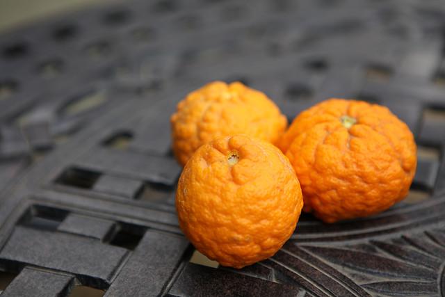 no-person-food-desktop-fruit-health 图片素材