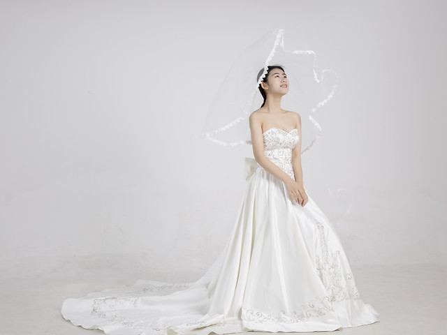 bride-wedding-fashion-gown-veil picture material