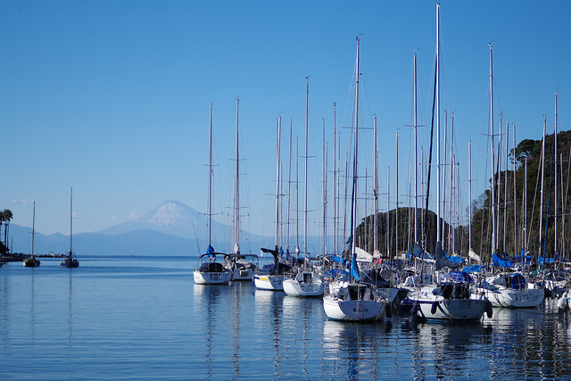 marina-yacht-sailboat-sea-harbor picture material