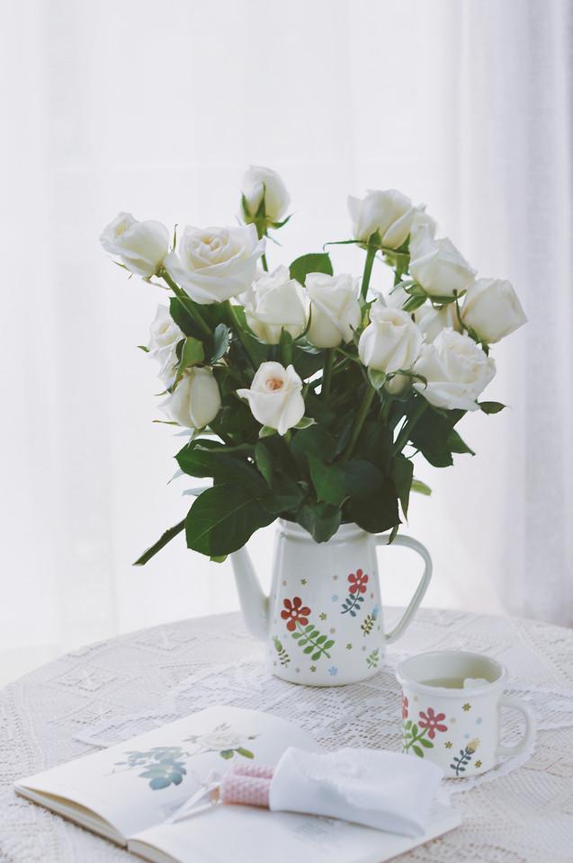 flower-vase-leaf-bouquet-no-person picture material