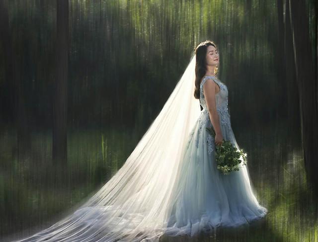 陶醉的新娘 picture material