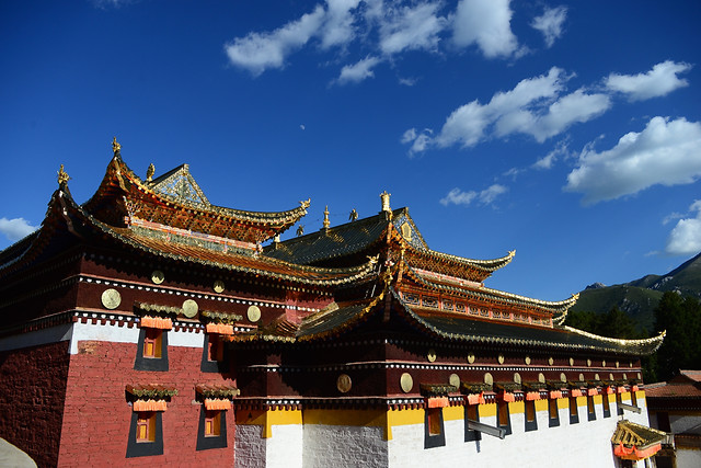 temple-chinese-architecture-travel-roof-forbidden picture material