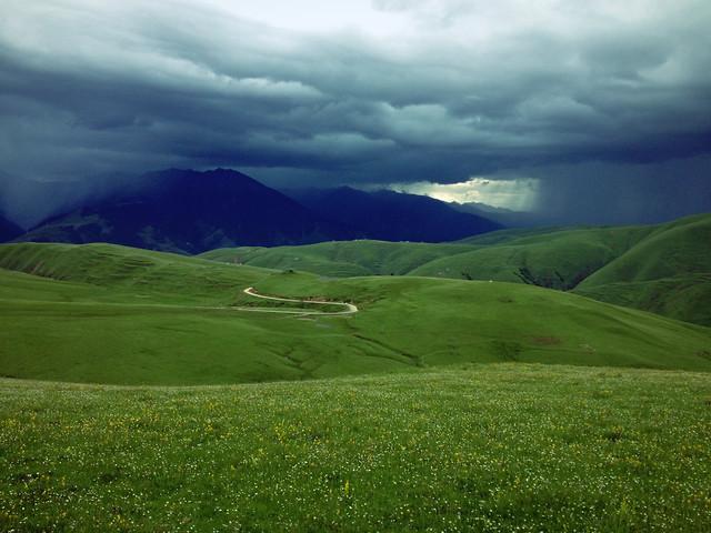 landscape-no-person-grass-nature-grassland 图片素材