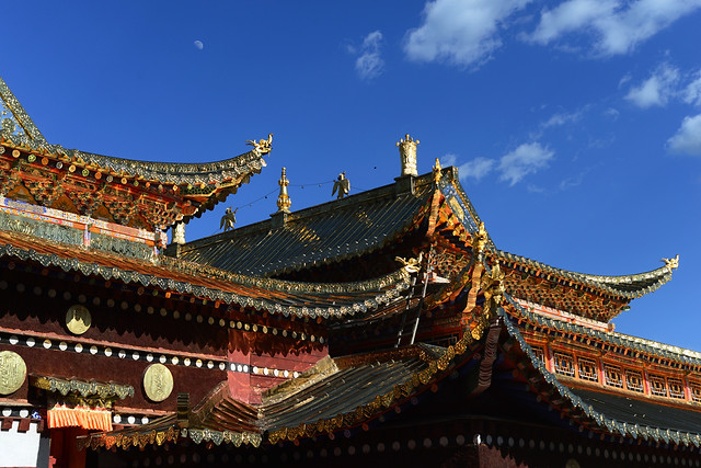 temple-chinese-architecture-roof-pagoda-travel picture material