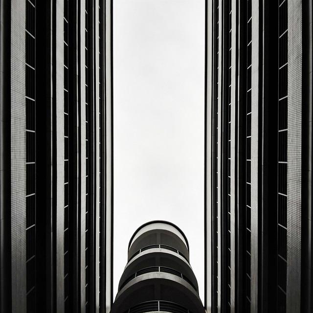 monochrome-business-skyscraper-city-tower picture material