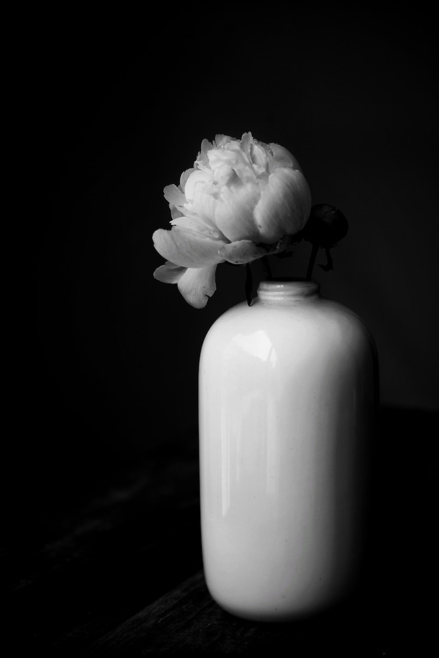 no-person-white-black-and-white-still-life-photography-still-life picture material