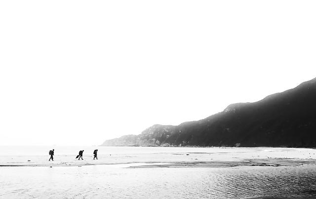beach-sea-water-landscape-ocean picture material